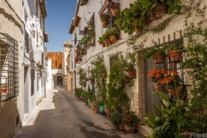 OLD TOWN REQUENA TOUR FROM VALENCIA
